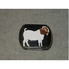 Boer Goat Receiver Hitch