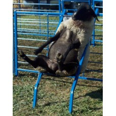 Chair for Hoof Trimming