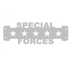 Special Forces Veteran Sign Only Stainless Steel